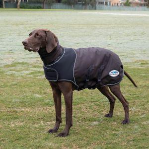 WeatherBeeta ComFiTec Ultra Cozi Dog Coat Medium/Lite