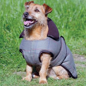 WeatherBeeta ComFiTec Tweed Dog Coat II