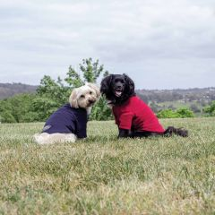 WeatherBeeta ComFiTec Fleece Dog Jumper