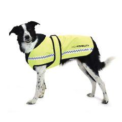 Equisafety Polite Dog Rug
