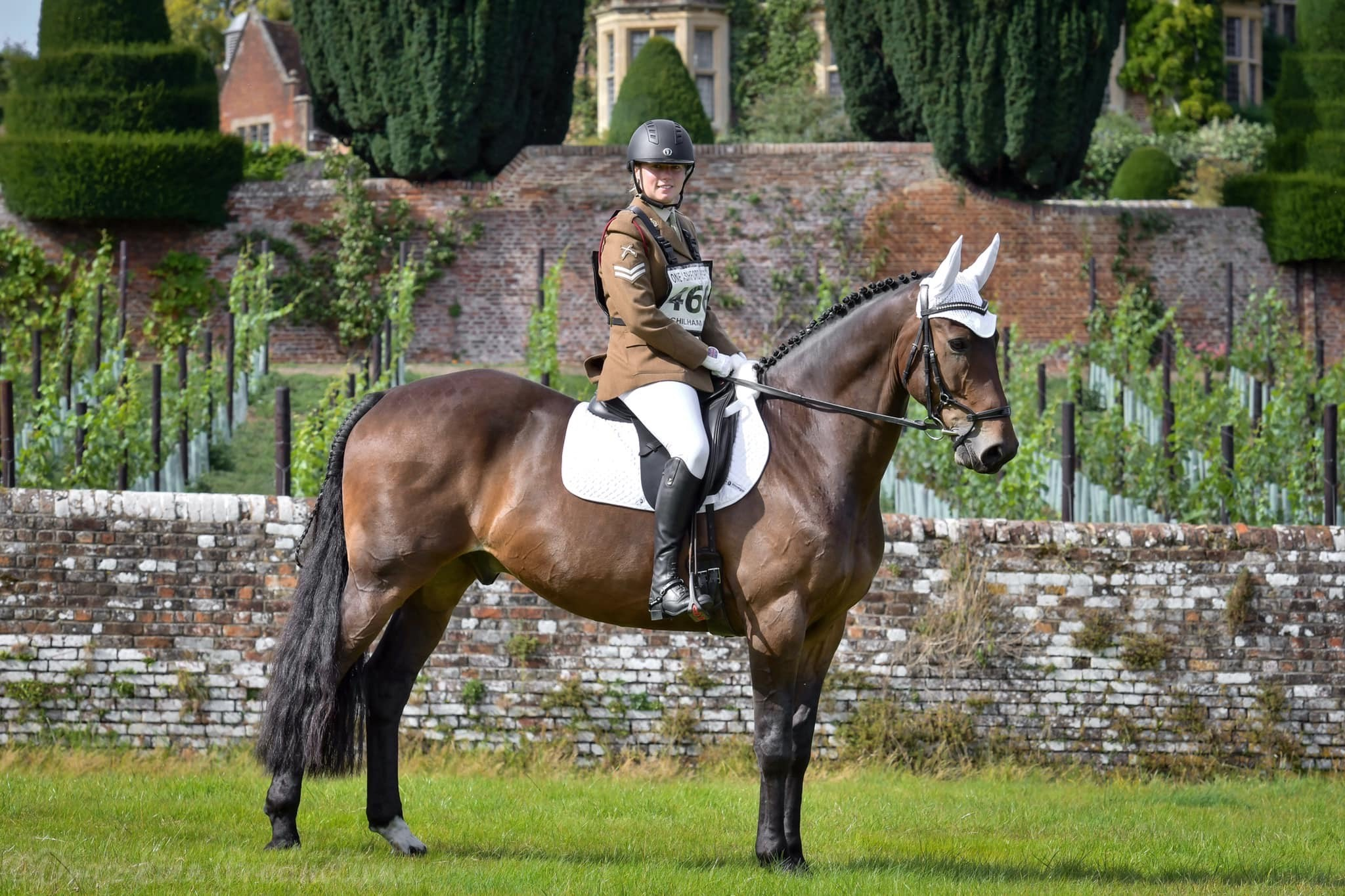 Leah and Tommy: ComFiTec Bridle Review