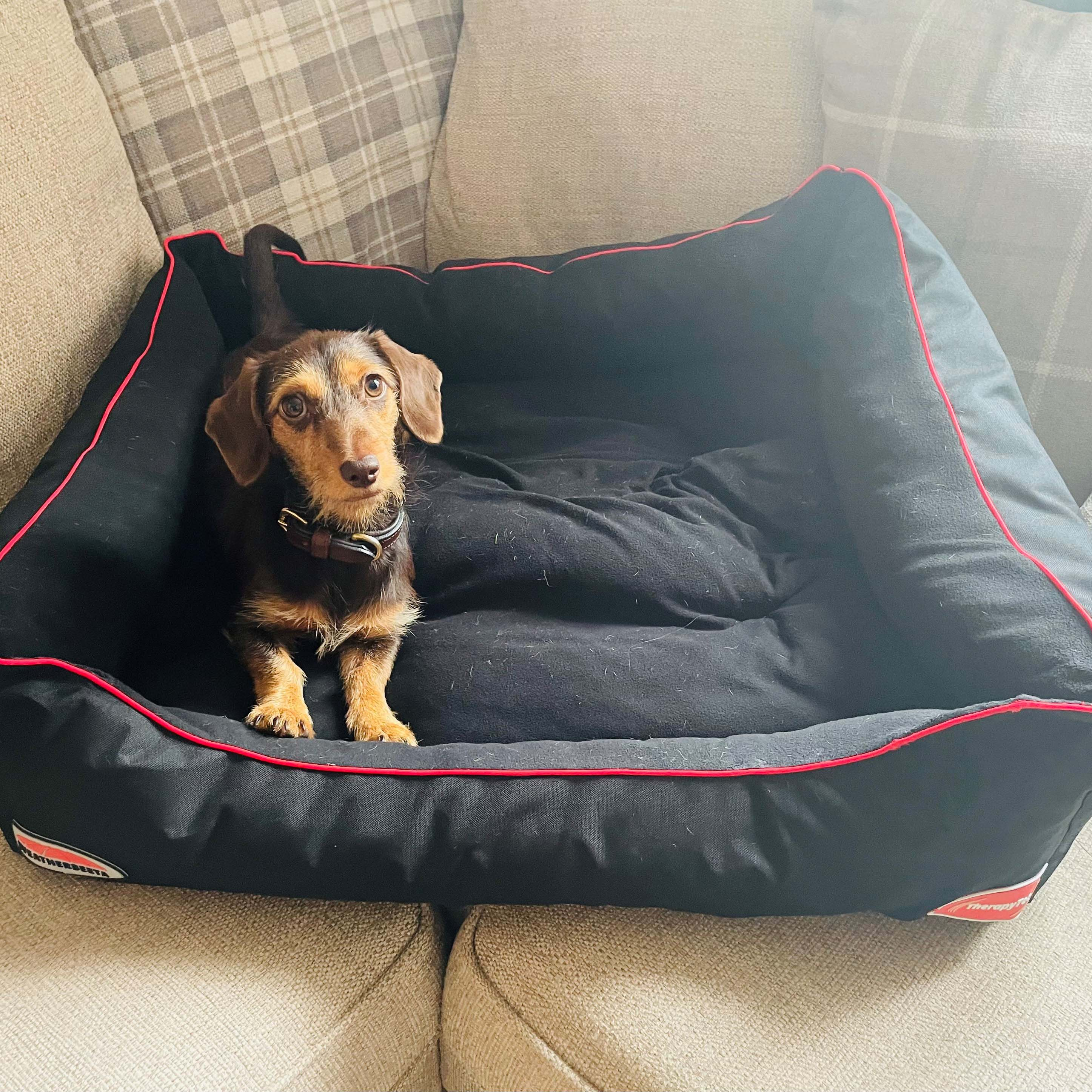 What makes the Therapy-Tec dog bed so effective?