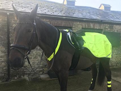 Megan & Patience – Volunteer Police Officers on Horseback