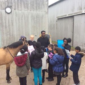 The Urban Equestrian Academy