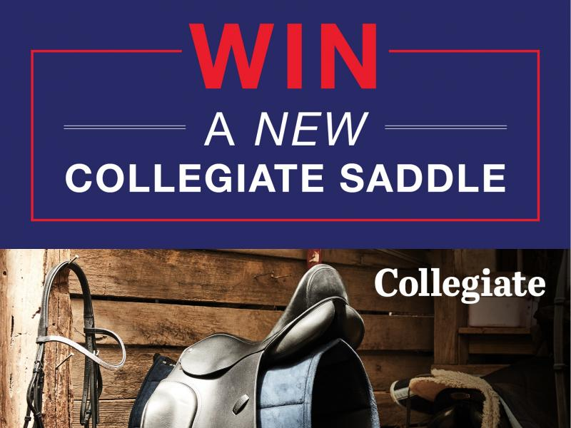 Win 1 of 2 Collegiate Scholar All Purpose Saddles!