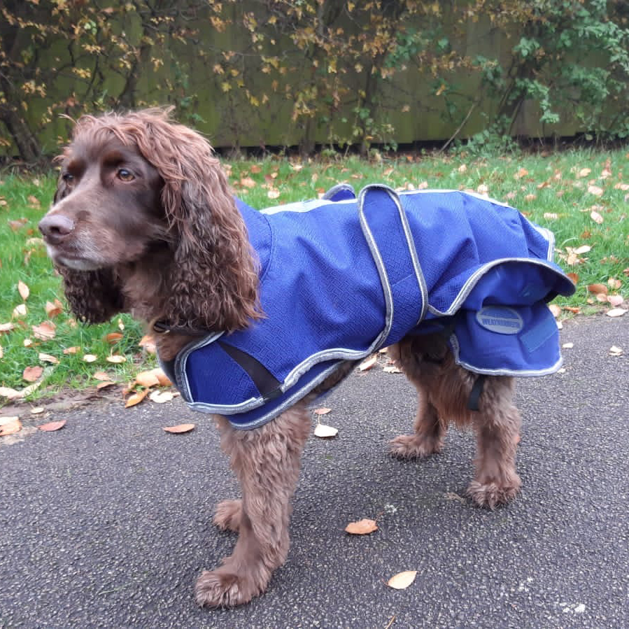 Product Review: ComFiTec Premier Free Duo Deluxe Parka Dog Coat