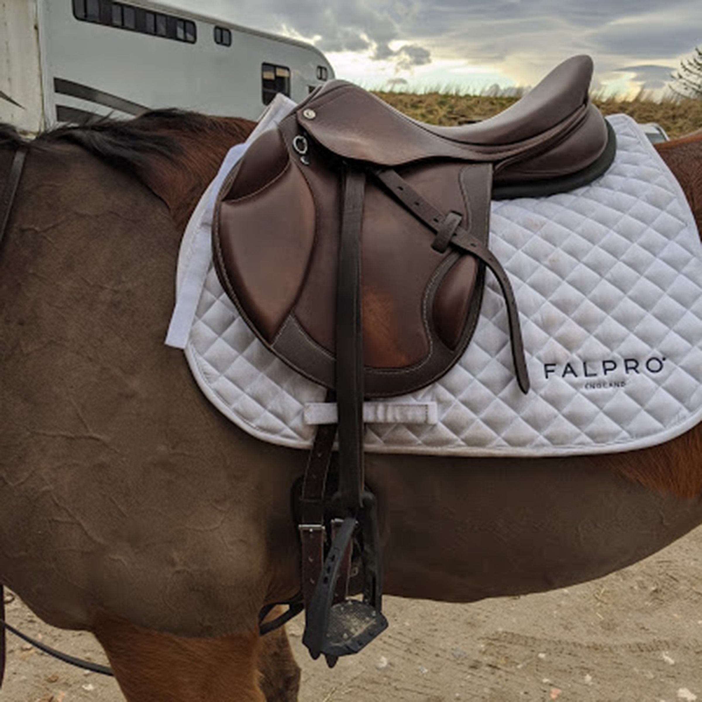 Product Review: Collegiate Degree Mono Event Saddle