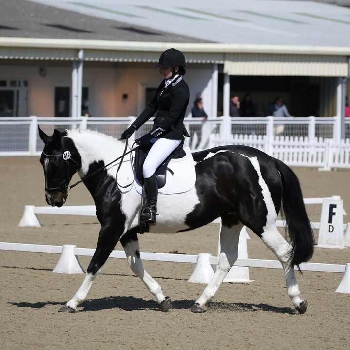 What to wear for dressage – A guide to women's and children's competition clothing