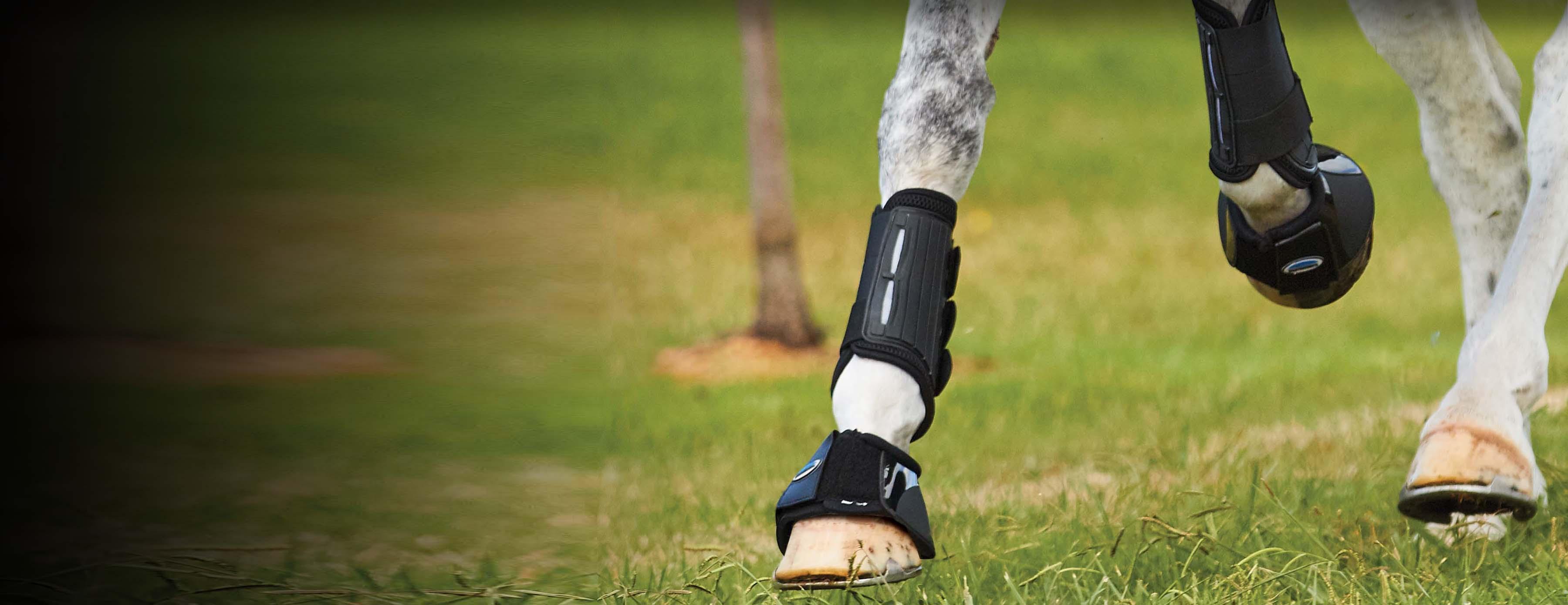 Boots & Bandages