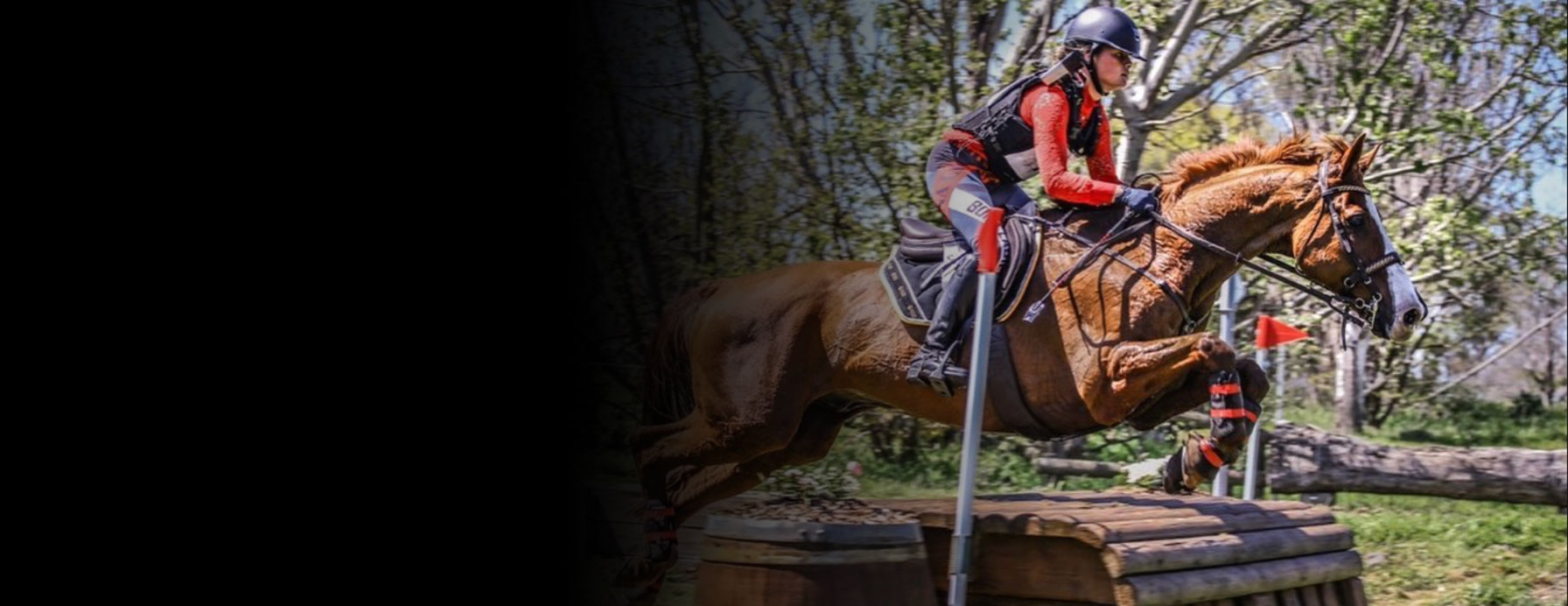 enzo treviso saddle