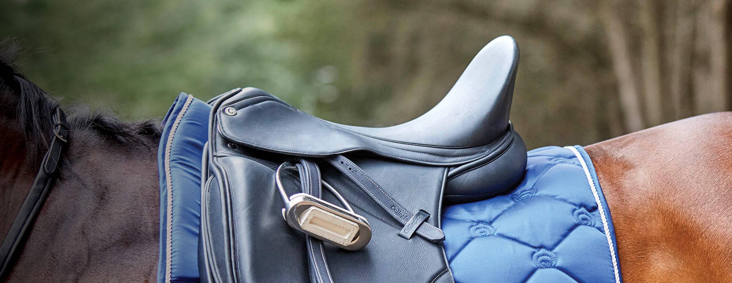 Collegiate Saddles
