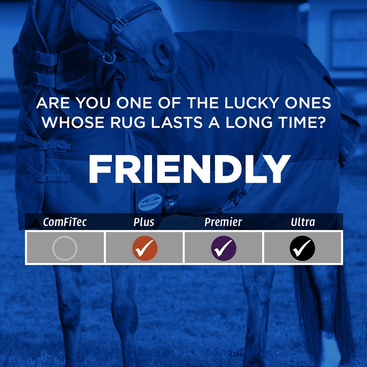 rug friendly