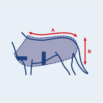 dog coat size guide