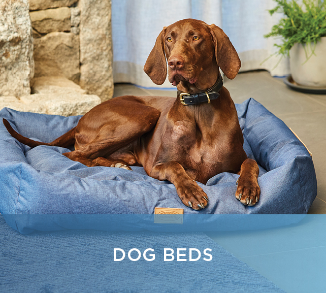 Shop Dog Beds