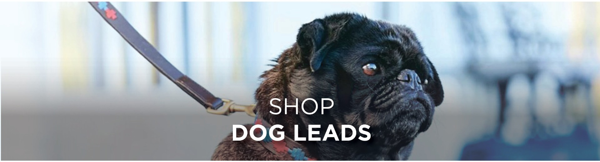 WeatherBeeta Dog Leads
