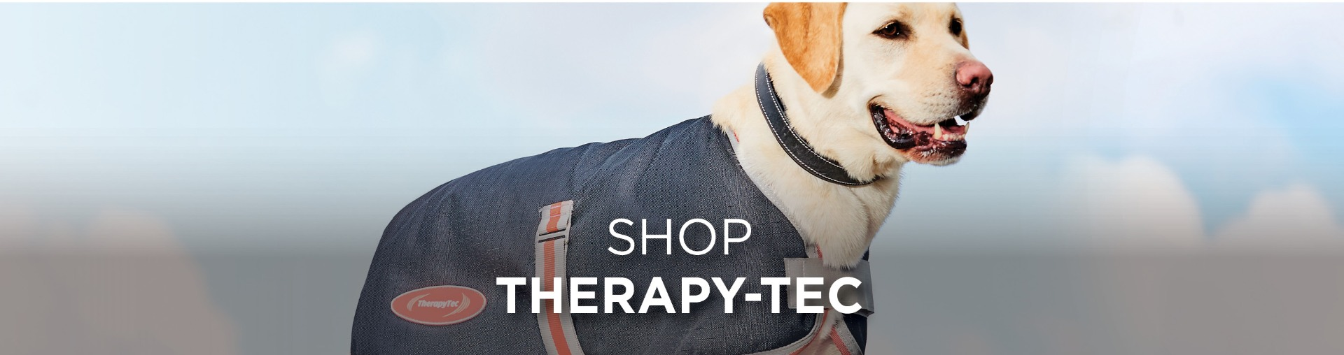 WeatherBeeta Dog Accessories