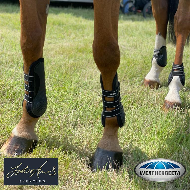 weatherbeeta tendon and fetlock boots
