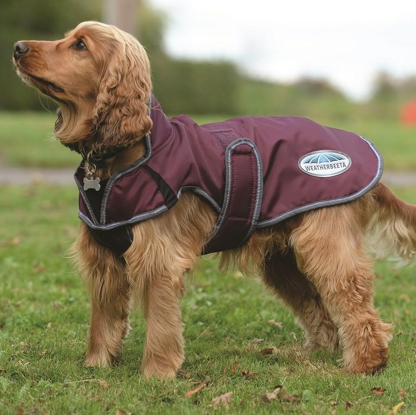 WeatherBeeta ComFiTec Premier Free Parka Deluxe Dog Coat Maroon