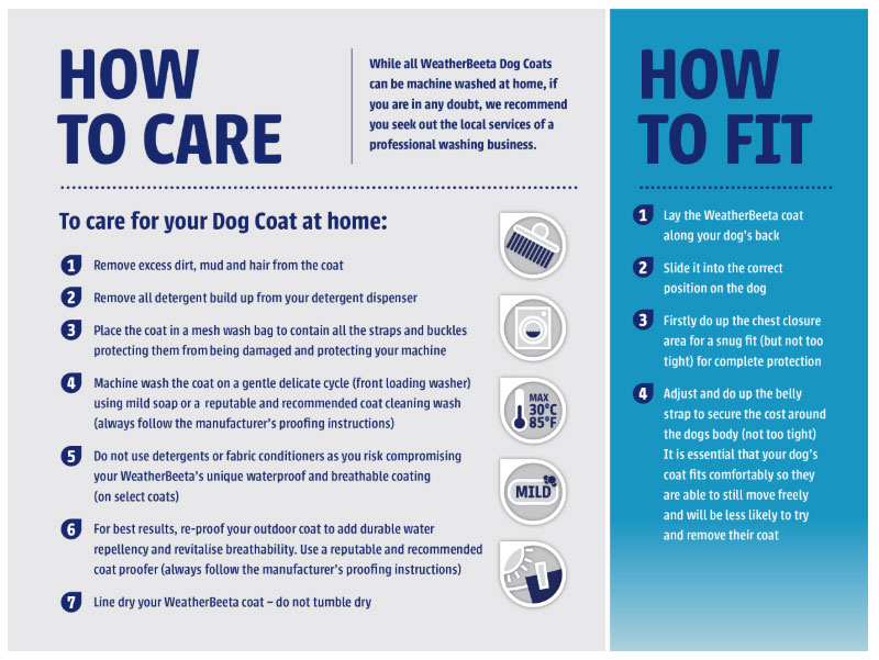 Dog Coat Care Guide