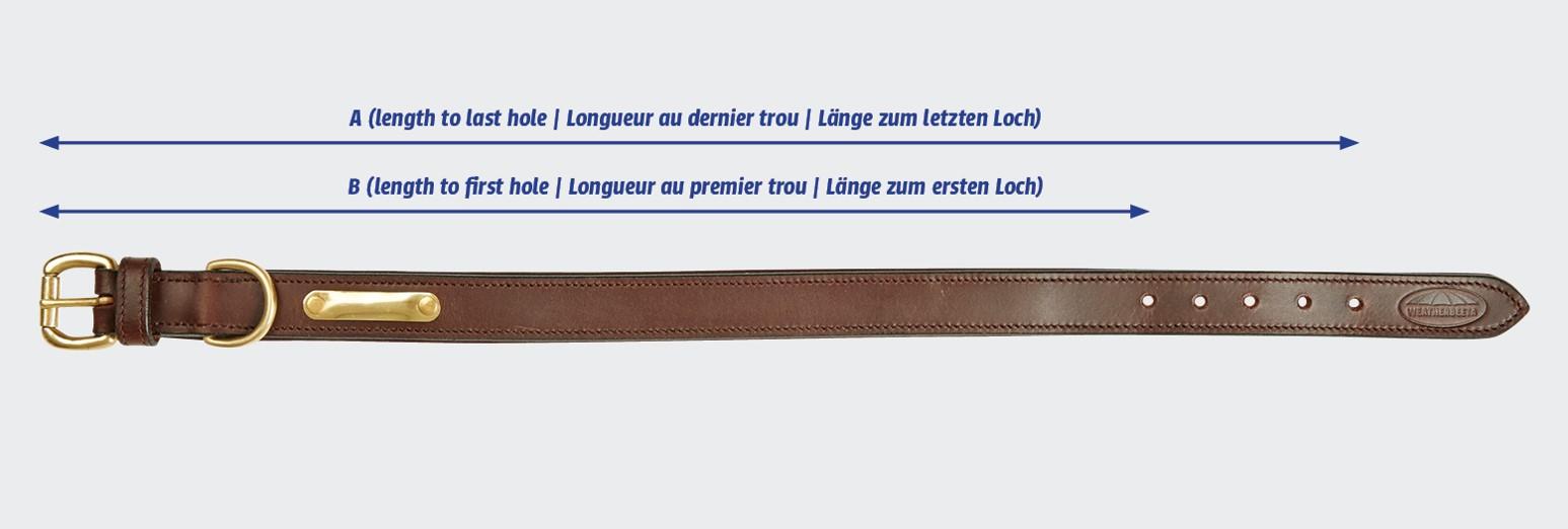 weatherbeeta leather dog collar