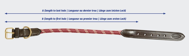 weatherbeeta rope leather dog collar