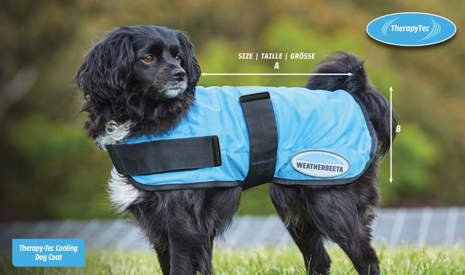 weatherbeeta therapy tec cooling dog coat