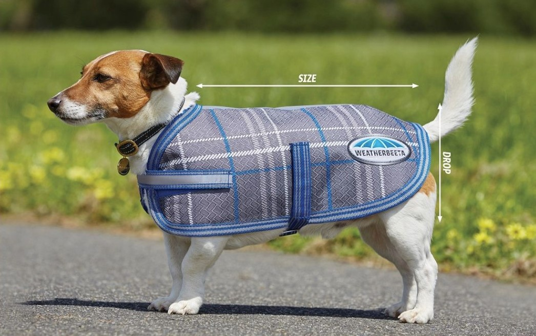 weatherbeeta dog size guide