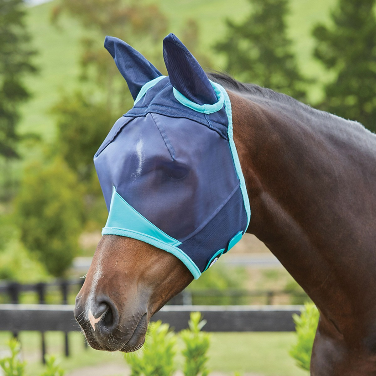 fly mask with eye darts