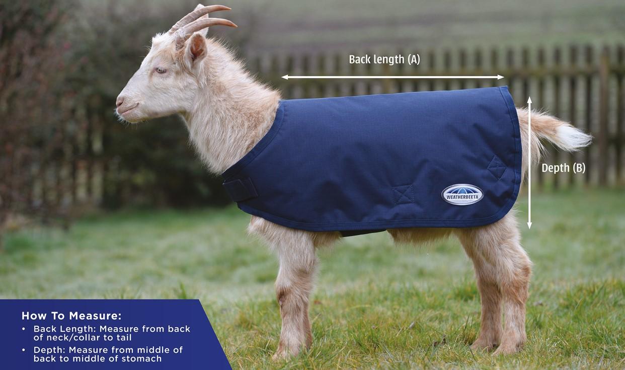 weatherbeeta goat coat size guide