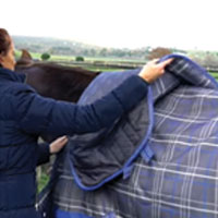 How to fit your Horse Rug