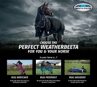 Choose the Perfect WeatherBeeta for You & Your Horse