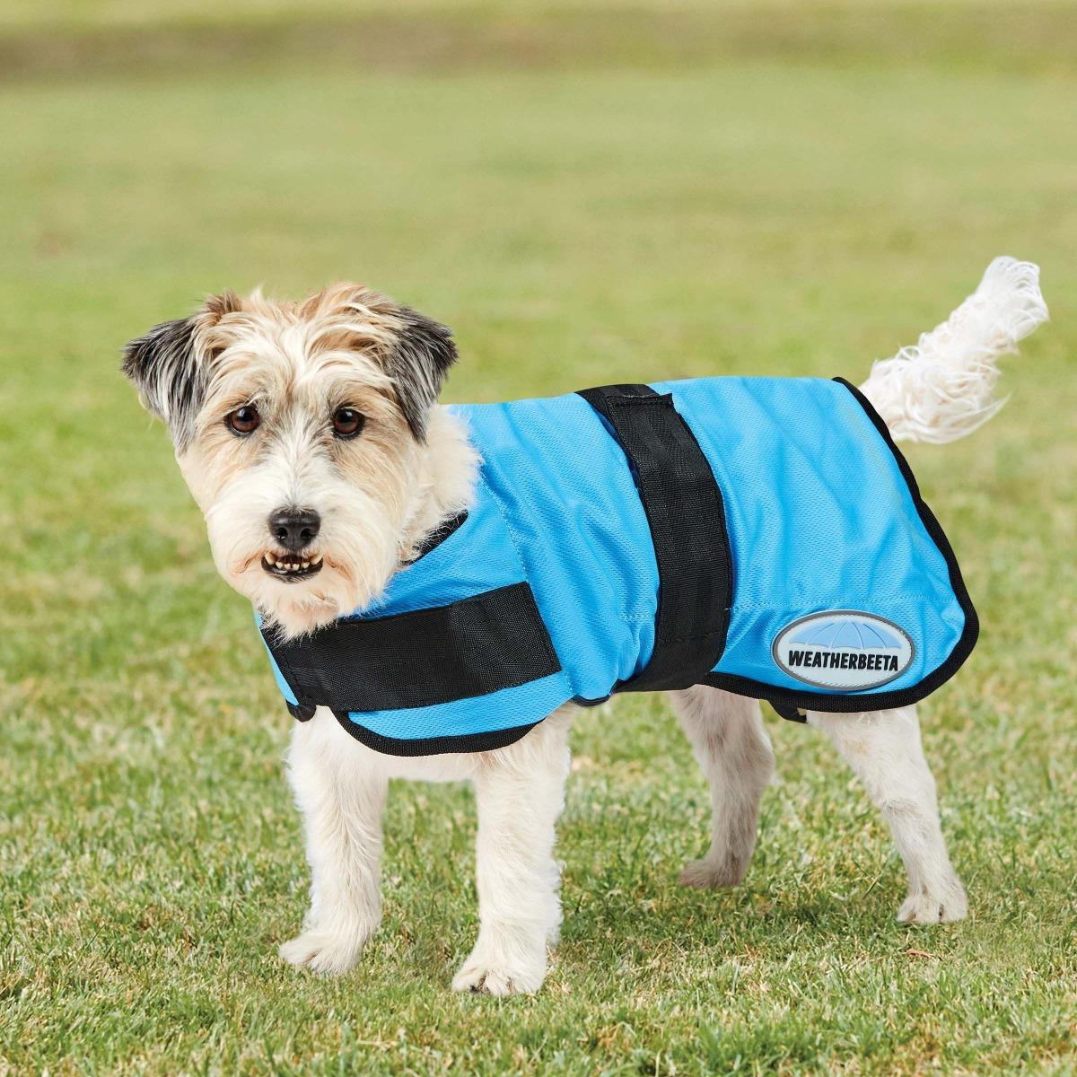 weatherbeeta therapy tec cooling coat